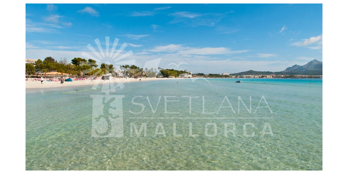 Beach of Alcudia.