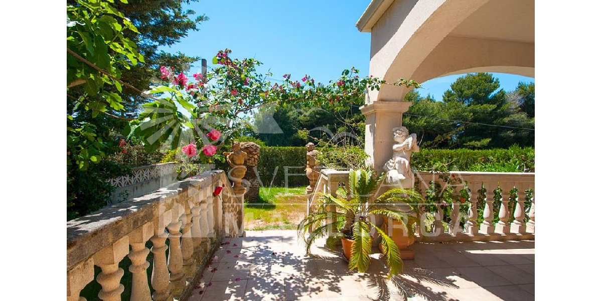 Some beautiful roses bloom every spring in the garden of the fantastic villa..