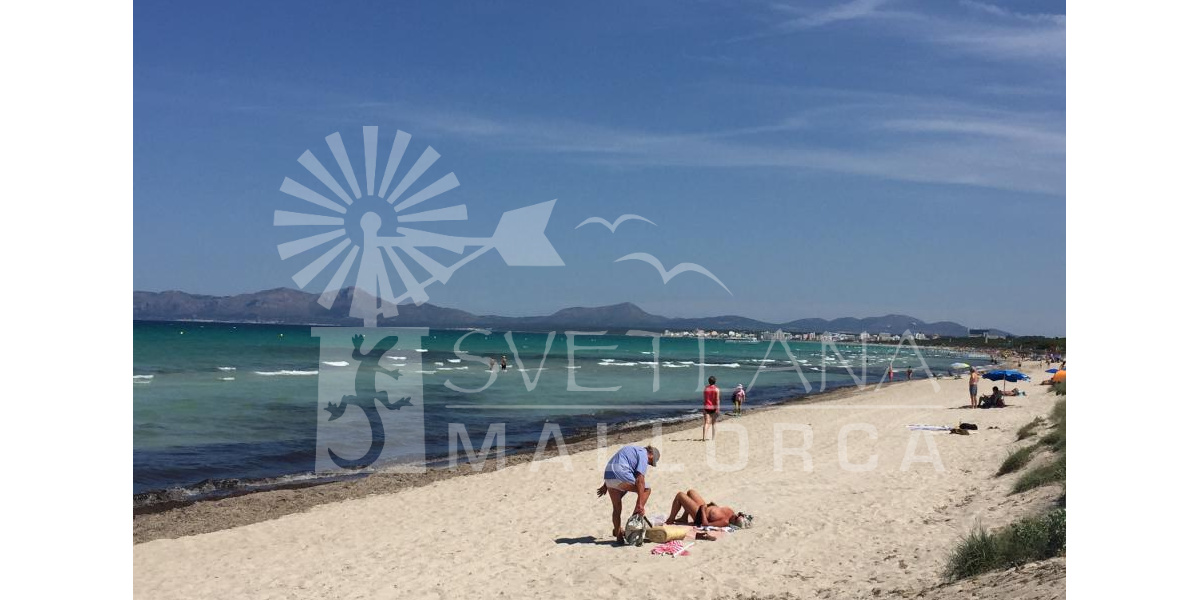 The beach in Alcudia.